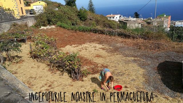 permacultura